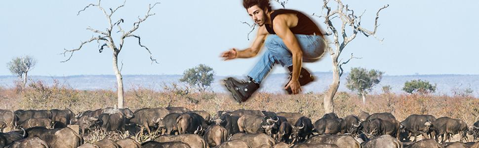 You Can't Rollerskate in a Buffalo Herd